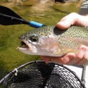 Fly Fishing Lingo That Is Commonly Used