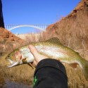Marble Canyon Outfitters is offering a 10% discount on any 2-3 angler trips booked in the month of February